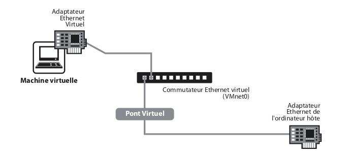 Le réseau ponté