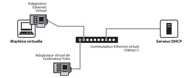 Le réseau host-only
